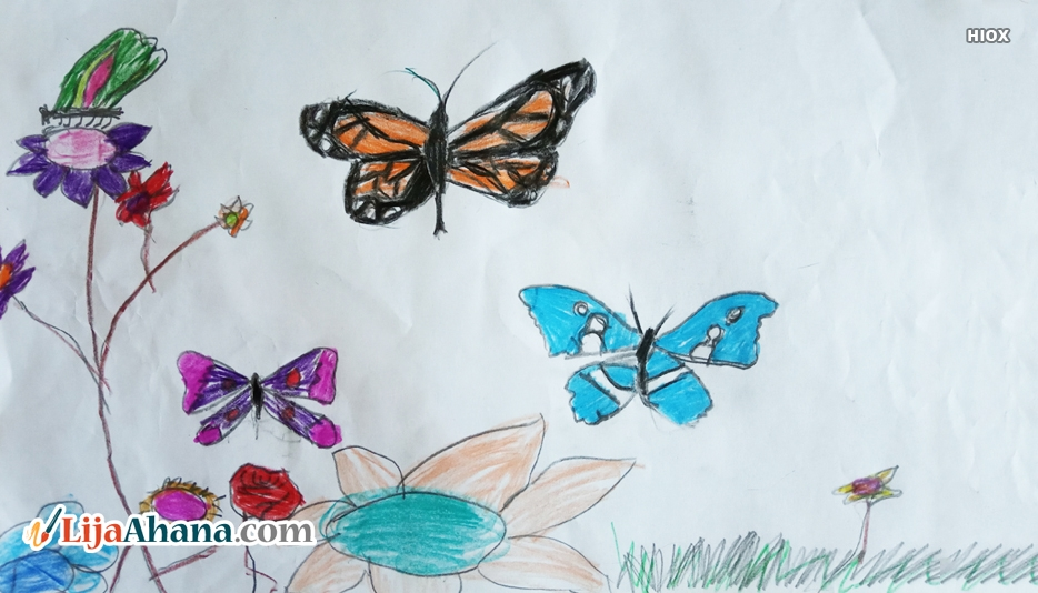 Butterfly Kid Drawing With Colour Pencil