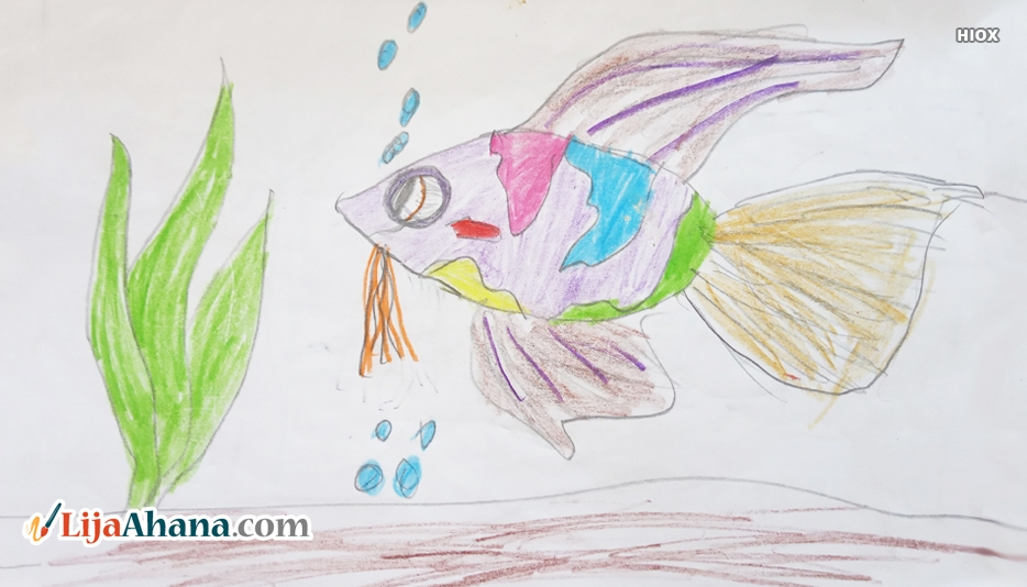 Fish Drawing With Pencil
