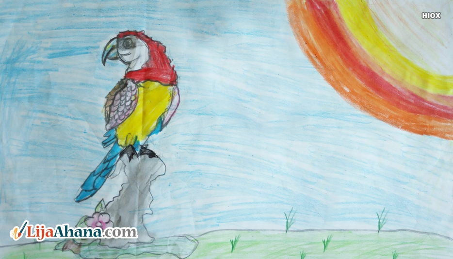 Parrot Kid Drawing