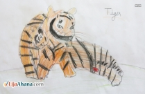 Kid Drawing Of A Tiger